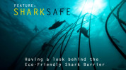 SharkSafe_Home