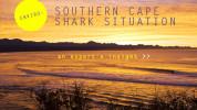 Shark_Home