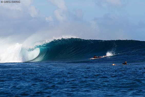 Image result for surfing in mauritius