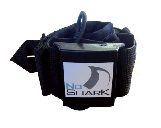 No Shark