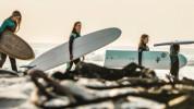 Boardswap