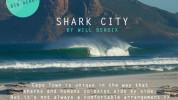 SharkCity_Hoome