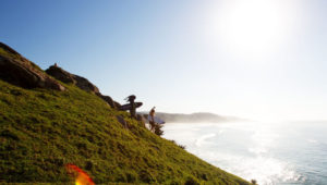 The Transkei Revisited